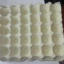 Продам линию для производства яичных лотков, в г.Харбин