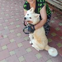 Инна, 50 лет, хочет пообщаться, в Тихорецке