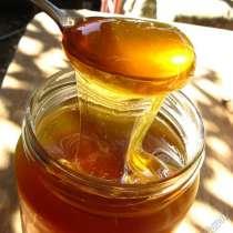 Мёд Крыма, в Саках
