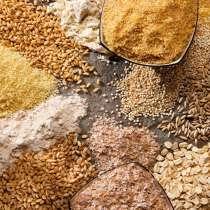 Корма и другие зерновые культуры. Условия договарная, в г.Атырау