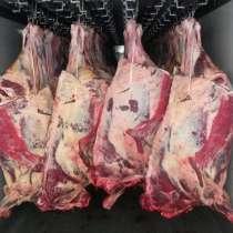 Мясо оптом, в Сургуте