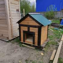 Собачья будка, в Ярославле