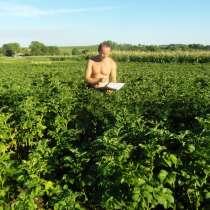 Коллекция самых урожайных сортов картофеля (диск dvd), в г.Волочиск