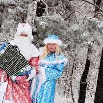 Дед мороз с гармошкой и снегурочка, в Набережных Челнах