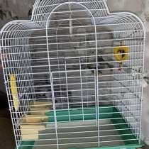 Клетка для попугаев большая, в Новокузнецке