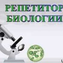 Репетитор, в Усть-Илимске