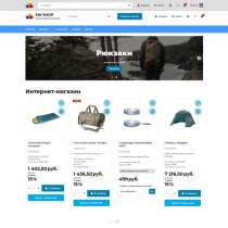Интернет магазин - 8000 р. за 3 дня, в Москве