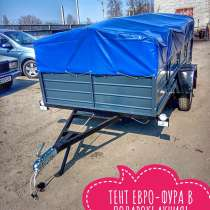 Купить прицеп 2500х1300 (Днепр-251)и другие модели от завода, в г.Киев