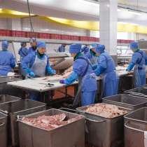 Требуются работники на колбасный завод, в г.Брест