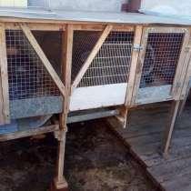 Клетки для кроликов, в Сальске
