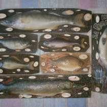 Муляжи рыб, в Новосибирске