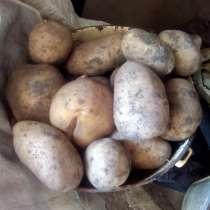 Продам картофель, в Благовещенске
