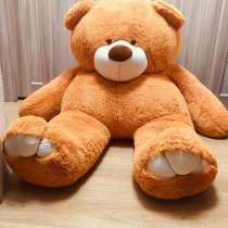 Большой плюшевый Медведь, в Солнечногорске