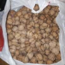 Грецкие орехи все с одного дерева, в Ростове-на-Дону