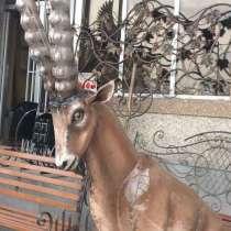 Горный козел(Ибекс) из металла, в Краснодаре