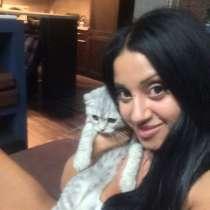 Alena, 28 лет, хочет пообщаться – Alena, 28 лет, хочет пообщаться, в г.Торонто