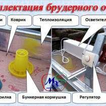 Клетка - брудер для выращивания перепелят, в г.Киев