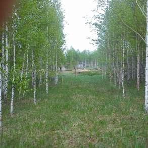 Продаю садовый участок 6 соток на озере Таватуй, в Екатеринбурге
