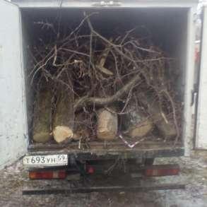 Вывоз веток с дачи и мусора с любого объекта, в Омске