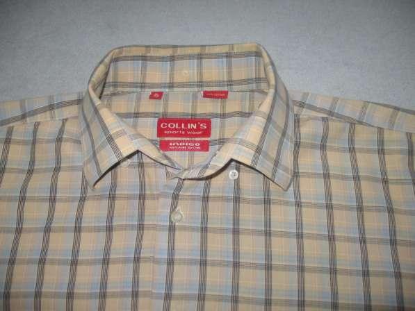 Мужская рубашка COLLINS