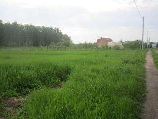 25 сот. ЛПХ в селе Непецино