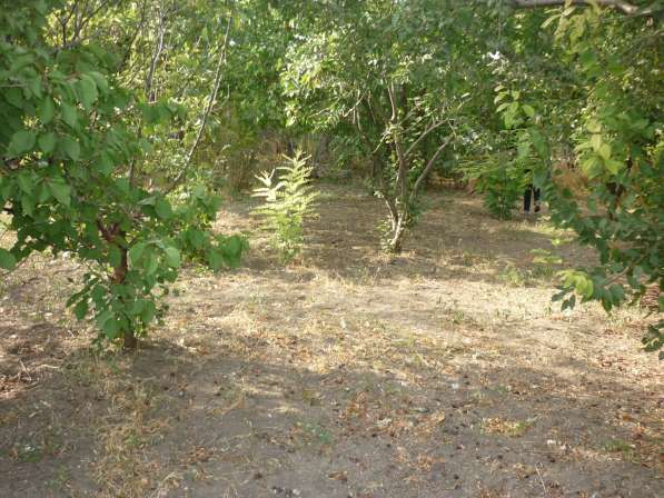 Земельный участок под ИЖС – 10 соток. Краснодарский край