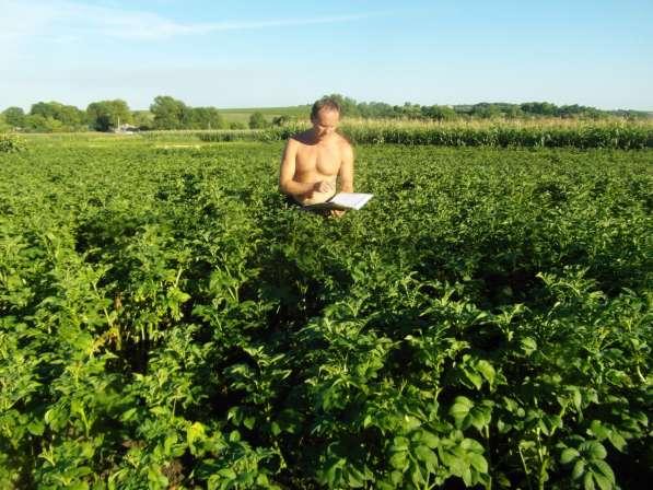 Коллекция самых урожайных сортов картофеля (диск dvd)