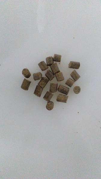 Экструдированный корм для осетра, сома, форели, карпа в Краснодаре