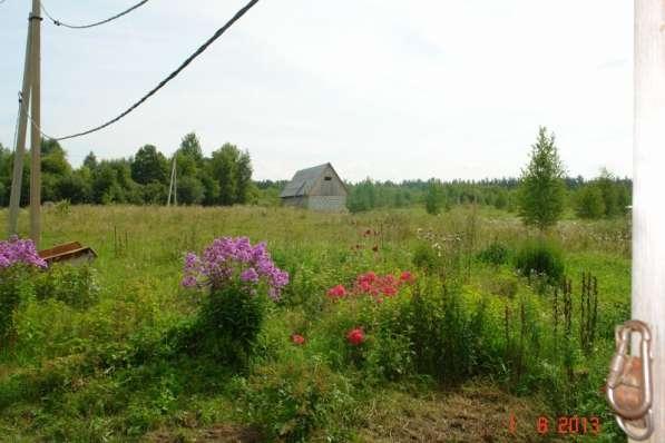 Сдаю в аренду 20ГА земли КФХ в Калужской области в Калуге фото 6