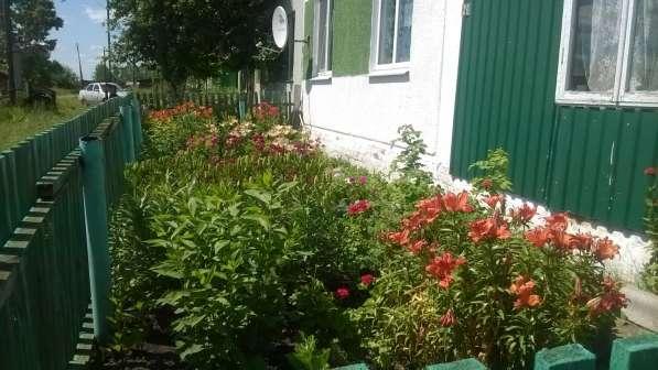 Продам дом который не сгниет и всегда будет недвижимостью! в Екатеринбурге