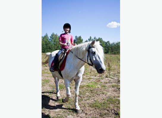 Уроки верховой езды.Обучение детей и взрослых. в Нижнем Новгороде фото 7