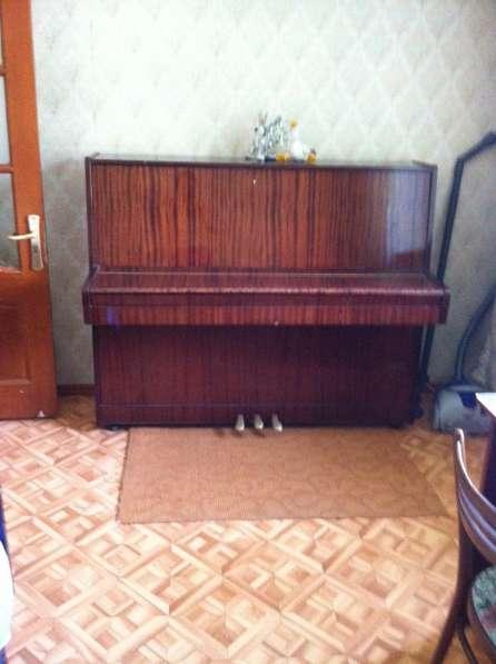 Пианино, Беларусь