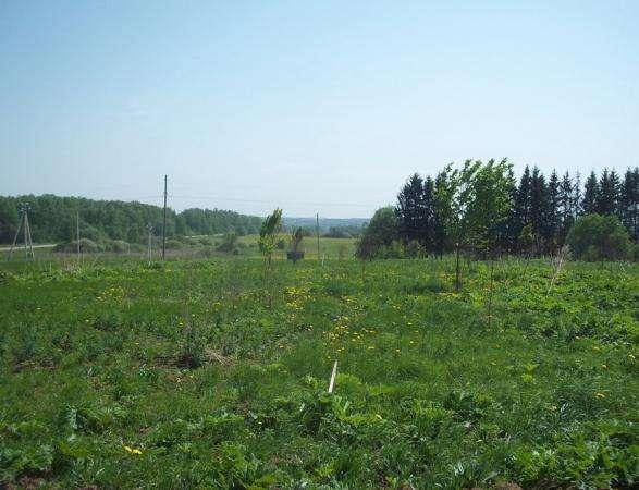 Продается земельный участок 18 соток в Сокольниково Можайский р-н, 123 км от МКАД по Минскому шоссе.