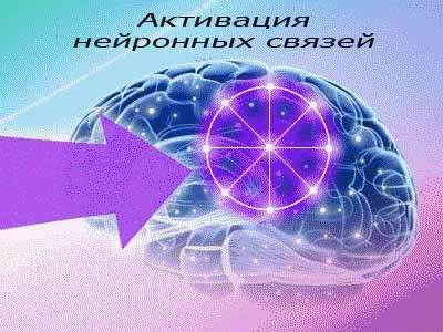Активация мозга Учащимся