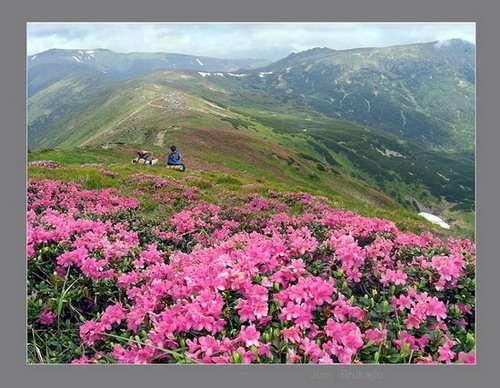 Майские праздники. 9 мая в Карпатах + Закарп