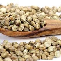 Семена пищевой Конопли (чистые, отборные), в Уфе