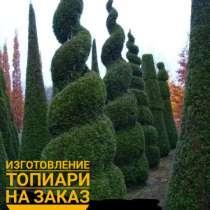 Туя Искусственная, в Москве