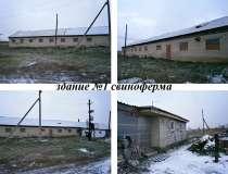 Действующая ферма, в Челябинске