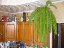 Кухонный гарнитур, в Иванове