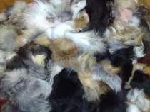 Продам обрезки от хвостов,лиса,песец., в Москве