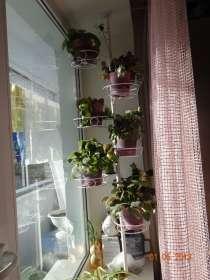 Подставки распоры для цветов, в Санкт-Петербурге