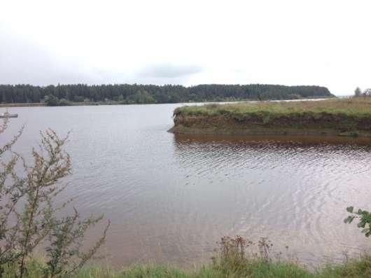 Участок на 1 береговой линии р. Волга, д. Ушаковка в г. Кимры Фото 5