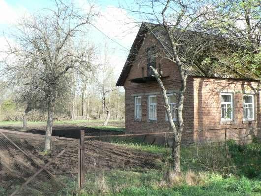 Дом в г. Чаусы в г. Могилёв Фото 2