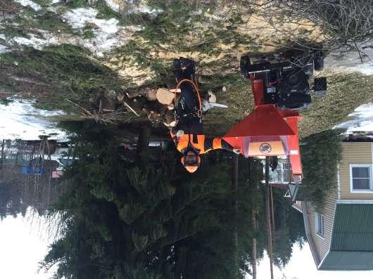 Спил сложных деревьев в Москве Фото 1