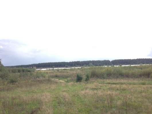 Участок на 1 береговой линии р. Волга, д. Ушаковка в г. Кимры Фото 3
