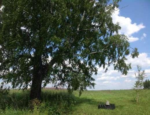 Продается земельный участок 30 соток (под личное подсобное хозяйство) в д. Шваново, Можайский район, 129 км от МКАД по Минскому шоссе. Фото 2