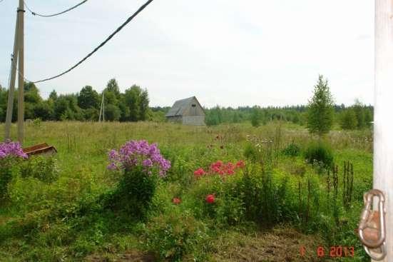 Сдаю в аренду 20ГА земли КФХ в Калужской области в Калуге Фото 5