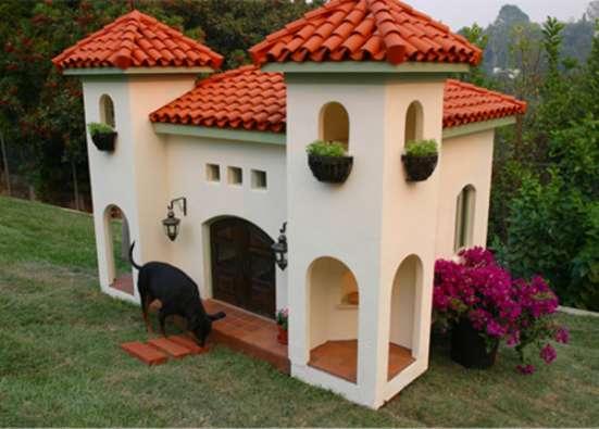 Квартирная передержка собак, кошек,хорьков,кроликов,попугаев