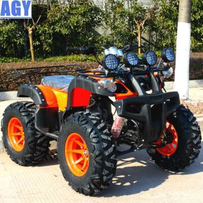 AGY china 250cc petrol off road atv bike quad