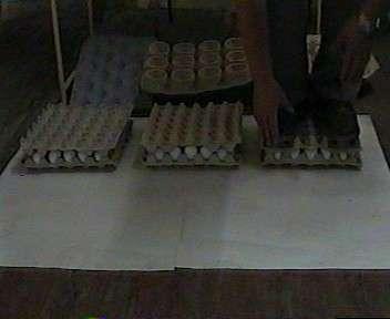 Инвестиции в производство, очень выгодно в г. Миргород Фото 1